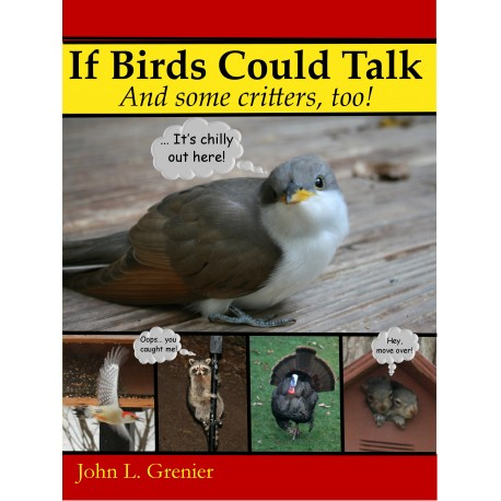 If Birds CouldTalk